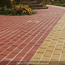 Тротуарная плитка Кирпич 200х100 h60. Золотой Мандарин
