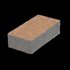 Тротуарная плитка Кирпич 200х100 h60 без фаски. Золотой Мандарин